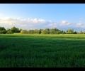 2736, terreno con rustico Treviso lato Est